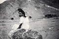 Josefina Manresa en el campo