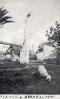 La huerta de Orihuela